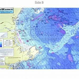 Ca201 Cape Massachusetts Jeffrey 39 S Ledge