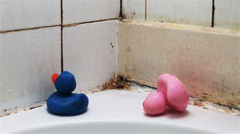 savoir cuisiner comment éviter la moisissure dans la salle de bain