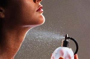 A Beginner U0026 39 S Guide To Perfume  How To Train Your Nose