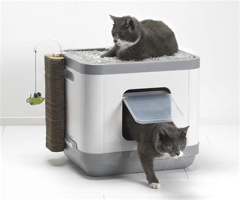 maison de toilette chat le cube animaloo