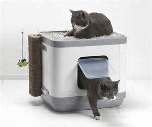 Maison Pour Chat Extérieur : bacs liti re et maisons de toilette pour chat animaloo ~ Premium-room.com Idées de Décoration