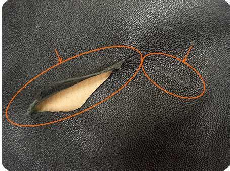 reparer griffe de sur canape en cuir comment reparer accroc canape cuir la réponse est sur