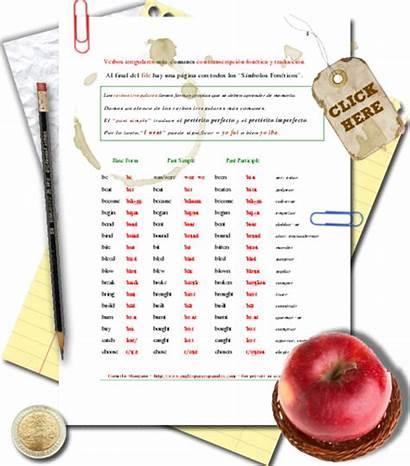 Verbs Pronunciation Irregular Past Spanish Participle Compartir