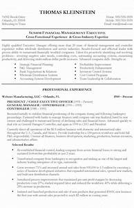 examples of resume qualifications chief executive officer resume example
