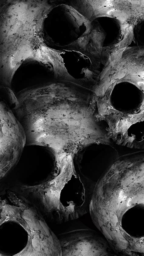 skulls  wallpaper scary monochrome  blackdark