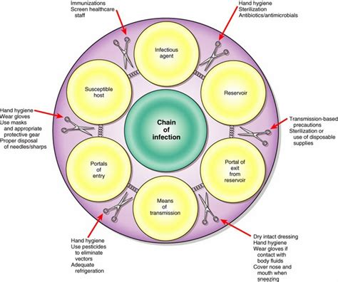 the fantastic world of microbiology and parasitology