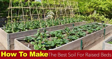 How To Make The Best Raised Bed Soil