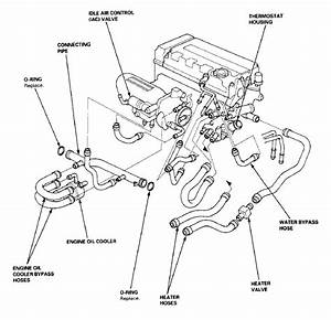 Ef B16a Thermostat Location - Honda-tech