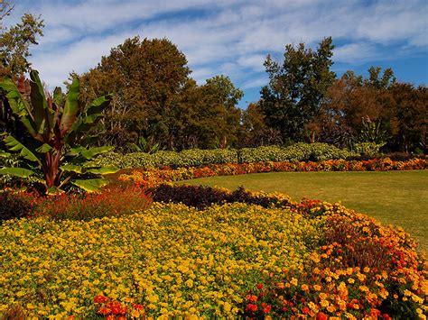 Garten Herbst Aufgaben by Rasen Vertikutieren Herbst Rasen Pflege Im Herbst