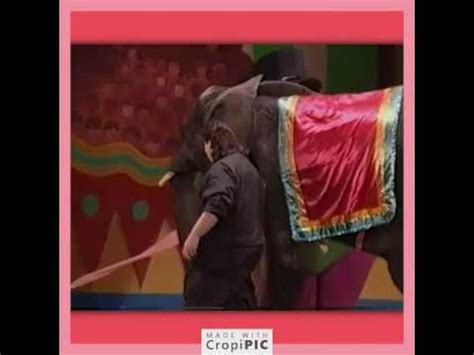 Musical zoo is a barney & friends episode video that was released on january 4, 2011. Mr. Elephant Leaves The Stage (Barney Live! in New York City) - YouTube