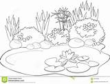 Pond Coloring Pages Animals Water Lily Printable Illustration Vector sketch template