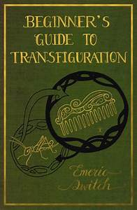U0026quot A Beginner U0026 39 S Guide To Transfiguration By Emeric Switch
