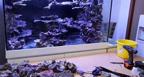 Reef Aquarium Aquascaping by Real Reef Aquascaping With Youngil Moon