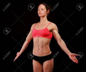 Abdominal Muscle Anatomy Female Abdominal Muscle Anatomy