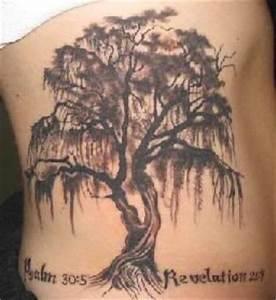 spanish moss tree tattoo   Tattoos   Pinterest   Trees ...