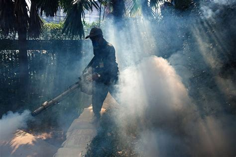 "Tidligere i år opplyste senatorer i washington at joe bidens regjering etterforsket en mulig økning i. ""Havanna-Syndrom"" geklärt - Vorarlberger Nachrichten | VN.AT"