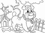 Coloring Bulldog Pages Lunch Getdrawings Place sketch template