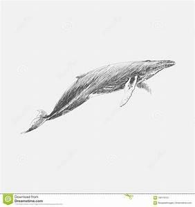 Stye Cartoons, Illustrations & Vector Stock Images - 234 ...