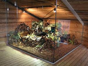 Reptile Big Enclosure