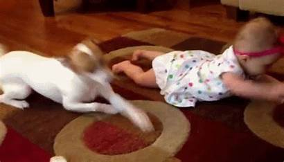 Dog Teaching Crawl Moments