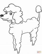 Coloring Poodle Cartoon Pages Printable Dogs Adult Template Drawing Sketch Paper Templates sketch template