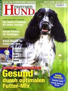 Partner Hund Abo Kündigen : partner hund ~ Lizthompson.info Haus und Dekorationen