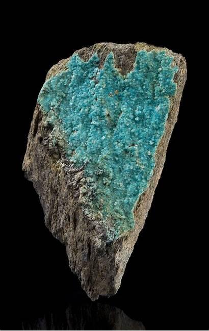 Turquoise Mine Bishop Specimen Mineral Minerals Usa