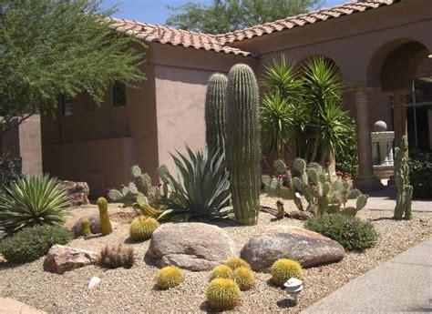 desert landscaping photos 25 best ideas about arizona landscaping on pinterest desert landscaping backyard desert