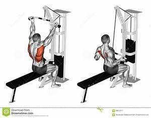 Exercising  Reverse Grip Lat Pulldown Stock Illustration