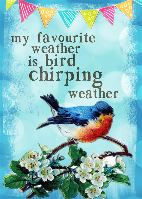 favourite weather  bird chirping weather mixed media