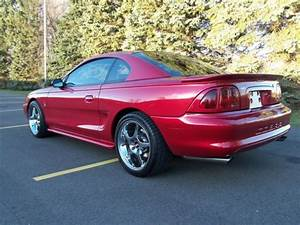 Used SVT Mustang Cobra SN95 Supercharged 525 RWHP 4.6DOHC Fully Built & Forged Motor for sale