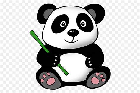 giant panda bear drawing clip art panda png    transparent carnivoran