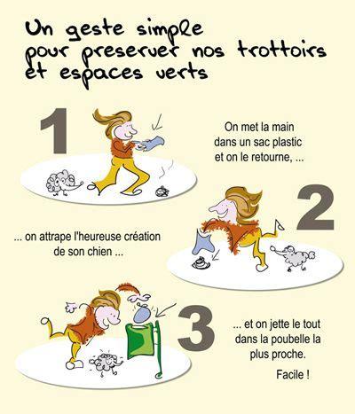 Que Faire Des Crottes De Chien Dans Le Jardin by L Importance De Ramasser Les Crottes De Chiens Dogbuddy