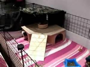 Guinea Pig Hidey Houses
