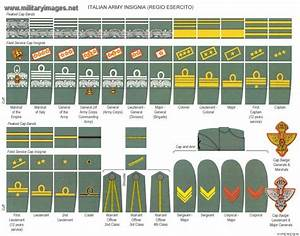 G W Fashion Blog Shape Colours Military Research