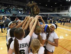 Which Ann Arbor-area volleyball team has the best chance ...