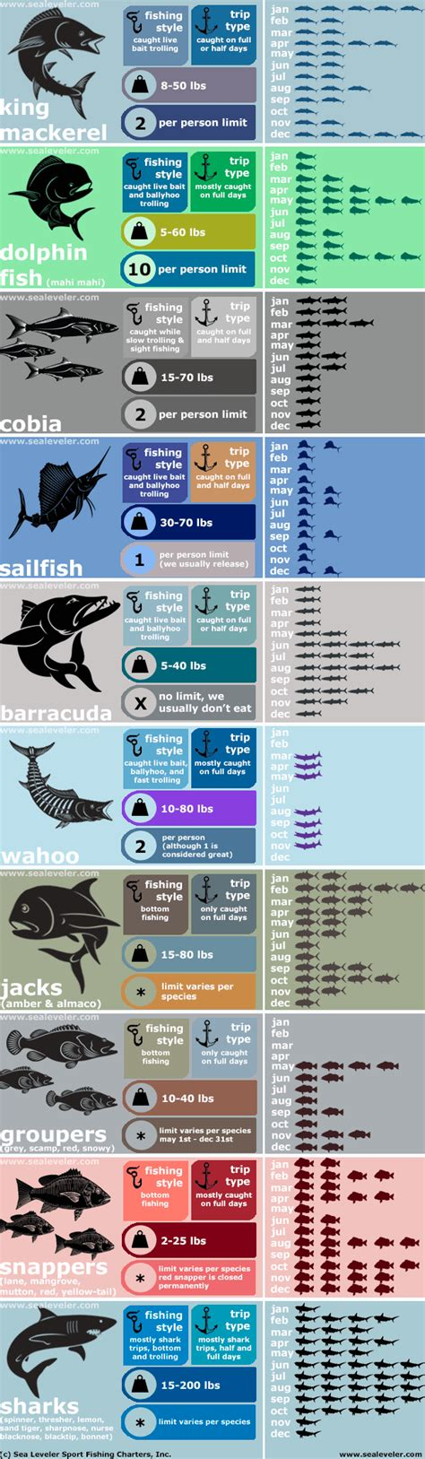 fish month fishing infographic florida caught keys sport charters saltwater sea leveler