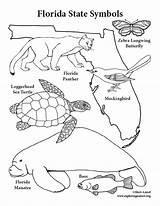 Florida State Coloring Symbols Pages Manatee Texas Panther Drawing Printable Cattle Getcolorings Sheet Oklahoma Getdrawings Fl Pdf Colorings Realistic sketch template