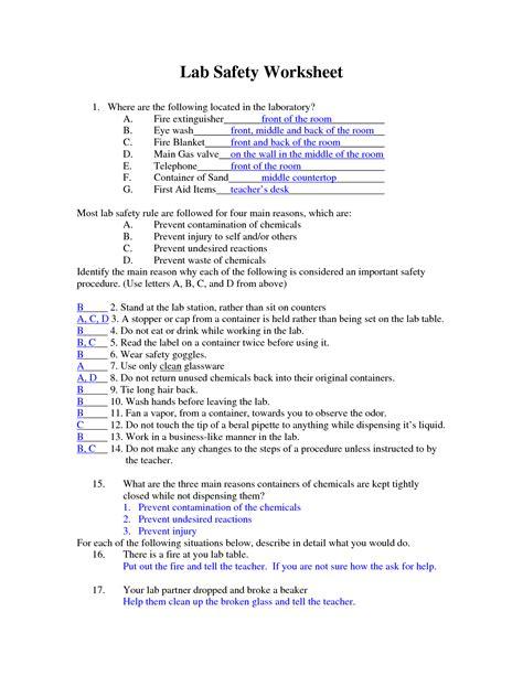 6 Best Images Of Printable Lab Worksheet  Science Lab Safety Symbols Worksheets, Dna Gel