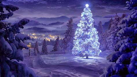 200+ Latest Concepts Of Christmas Tree