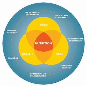Strengthening Systems For Nutrition