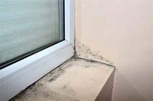 Feuchtigkeit Am Fenster : schimmel nicht zwingend ein problem des fensters ~ Watch28wear.com Haus und Dekorationen