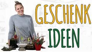 Amaryllis In Wachs : 5 dekorationen mit der wachs amaryllis weihnachtsdeko ~ A.2002-acura-tl-radio.info Haus und Dekorationen