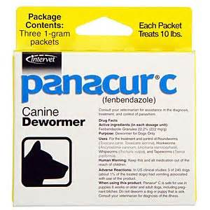 fenbendazole for cats panacur c fenbendazole granules 1 grams 3 packets