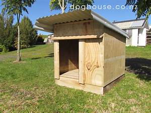 dog house outdoor dog puppy houses kennels and runs With the dog house boarding