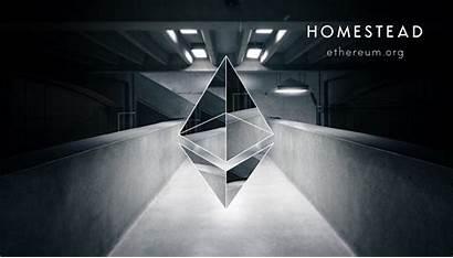 Ethereum Homestead Mining Cloud Eth Farm Ether