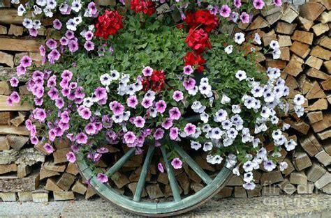 Decorazione Giardini by Fai Da Te Per Decorare Il Giardino 16 Idee Lasciatevi