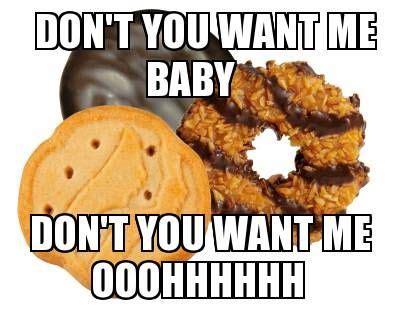 Girl Scout Cookie Memes - 61 best cookie sale fun memes cartoons images on pinterest girl scout cookies gs cookies