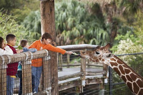 Best Zoo Exhibit Winners: 2019 10Best Readers' Choice ...