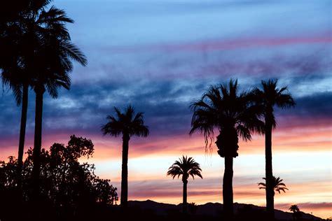 picture sky sunrise sunset dusk palm trees